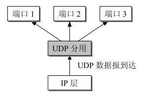 UDP分用.png